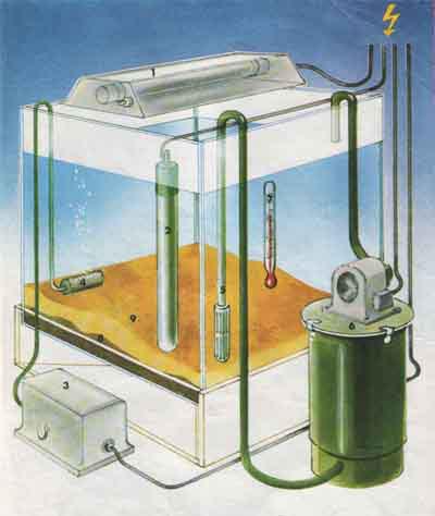 Akvarijum-za-ribice-kompletan