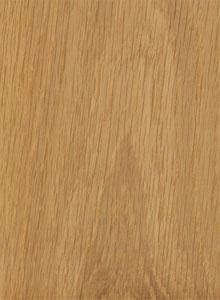 hrast-drvo-01