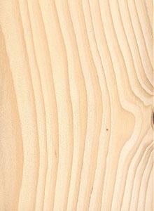 jela-drvo-01