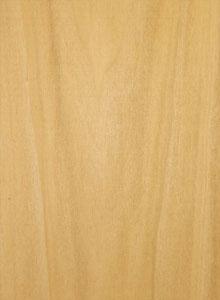 topola-drvo-01